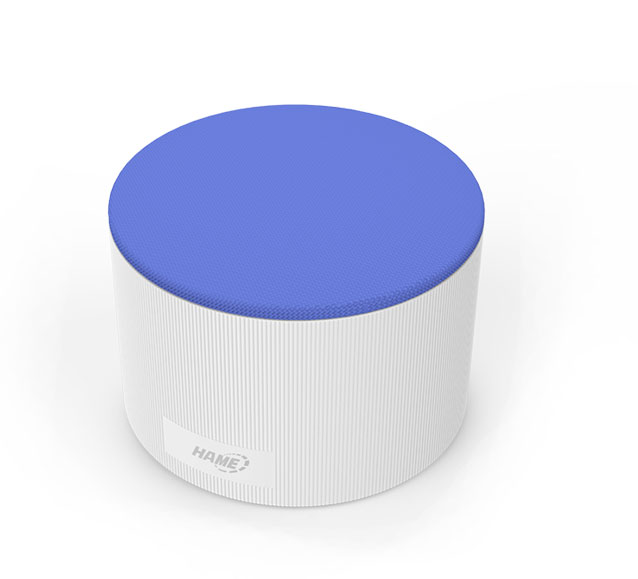 Portable WiFi Speaker-Beethoven